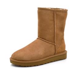 UGG Classic Short Stiefel chestnut
